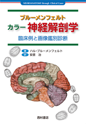 『ブルーメンフェルト カラー神経解剖学 -臨床例と画像鑑別診断-』